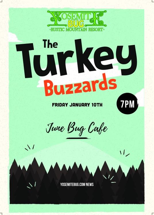 Turkeybuzzards.jpg